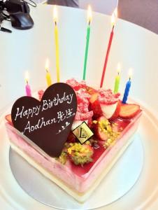 Aodhan cake (2)