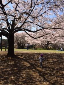 Photo 2015-04-02 12 02 50
