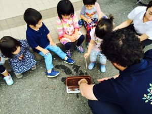 Photo 2015-05-29 11 55 02_blog